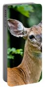 Doe Close Portable Battery Charger
