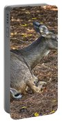 Doe Lying Down Portable Battery Charger