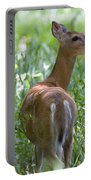 Doe Meadow Portable Battery Charger
