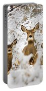 Doe Mule Deer In Snow Portable Battery Charger