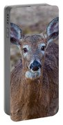Doe Portrait Portable Battery Charger