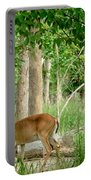 Doe Watching Portable Battery Charger