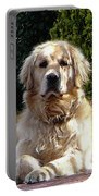 Dog On Guard Portable Battery Charger