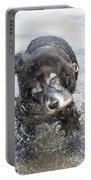 Dog Shake Portable Battery Charger