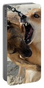 Dogs Fight On The Beach In Emerald Portable Battery Charger