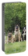 Dogs, Various Breeds In A Line Portable Battery Charger