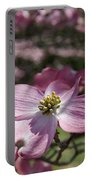 Dogwood  5576 Portable Battery Charger