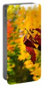 Dogwood And Fall Colors Portable Battery Charger