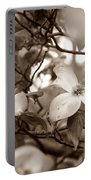 Dogwood Blossoms Portable Battery Charger by Sharon Popek