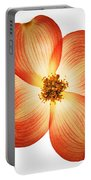 Dogwood Flower Portable Battery Charger