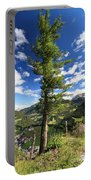 Dolomites - Tree Over The Valley Portable Battery Charger