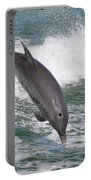 Dolphin Leap Portable Battery Charger