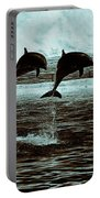 Dolphin Pair-in The Air Portable Battery Charger