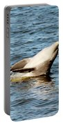 Dolphin Playing Portable Battery Charger