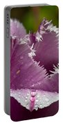 Dont Call Me A Monster Just Because I Have Teeth Purple Tulip Portable Battery Charger