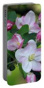 Door County Apple Blossoms Portable Battery Charger
