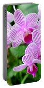 Doritaenopsis Flower Portable Battery Charger