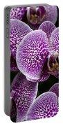 Doritaenopsis Leopard Prince 2651 Portable Battery Charger