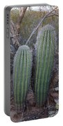 Double Barrel Saguaro Portable Battery Charger