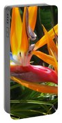 Double Bird Of Paradise - 1 Portable Battery Charger