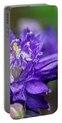 Double Blue Columbine Flower Portable Battery Charger