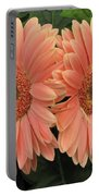Double Delight - Coral Gerbera Daisies Portable Battery Charger
