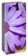 Double Purple Portable Battery Charger