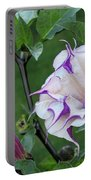 Double Purple Datura 6 Portable Battery Charger