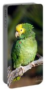 Double Yellow Headed Parrot Portable Battery Charger