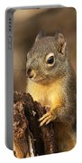 Douglas Squirrel On Stump Portable Battery Charger