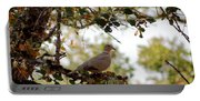 Dove In Autumn Oak Tree Lower Lake Ca Portable Battery Charger