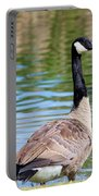 Down Around The Pond Portable Battery Charger