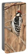 Downy Woodpecker In Brush Portable Battery Charger