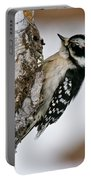 Downy Woodpecker Pictures 26 Portable Battery Charger