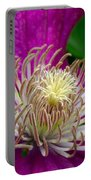 Dr. Seuss Flower No. 7636 And Bud Portable Battery Charger