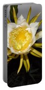 Dragon Fruit Blooming At Night I Portable Battery Charger