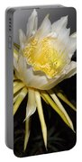 Dragon Fruit Blossom II Portable Battery Charger