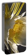 Dragon Fruit Blossom In Profile Portable Battery Charger