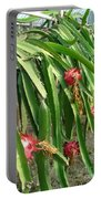 Dragon Fruit Tree Portable Battery Charger