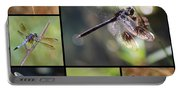 Dragonflies On Twigs Collage Portable Battery Charger