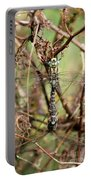 Dragonflies Portable Battery Charger