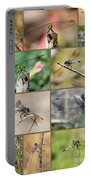 Dragonfly Collage 3 Portable Battery Charger