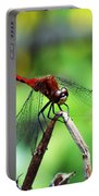 Dragonfly Hard At Work Portable Battery Charger