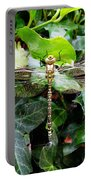 Dragonfly In An English Garden Portable Battery Charger