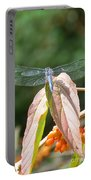 Dragonfly In Early Autumn Portable Battery Charger