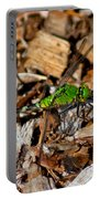 Dragonfly In Mulch Portable Battery Charger