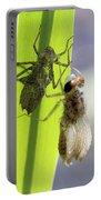 Dragonfly Metamorphosis - Fourth In Series Portable Battery Charger