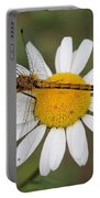 Dragonfly On A Daisy Portable Battery Charger
