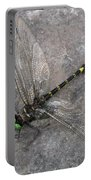 Dragonfly On Rock Portable Battery Charger