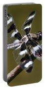 Dragonfly Twelve Spot Skimmer Portable Battery Charger